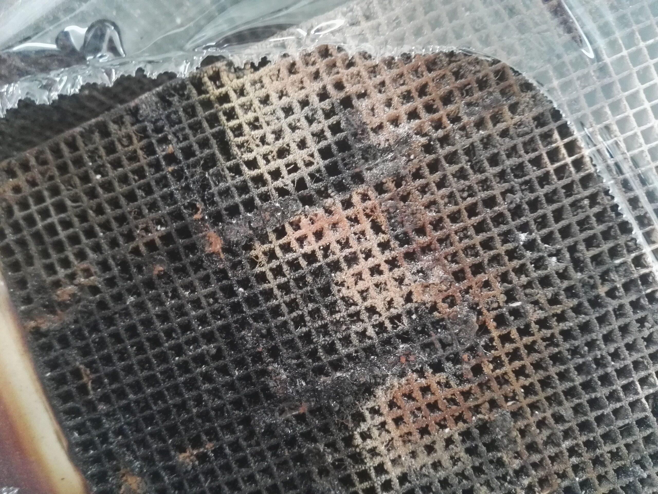 intasamento letto ceramico honeycomb
